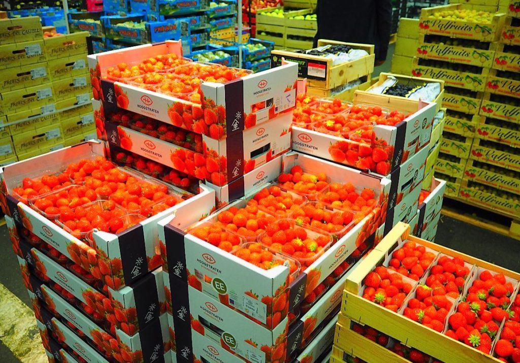 MIN Rungis fruits fraises